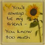 Fridge Magnet 001 Youll always be my friend- you know too much