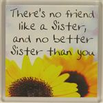 Fridge Magnet 011 Theres No friend Like a Sister