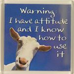 Fridge Magnet 029 Warning: I have attitude and I know how to use it