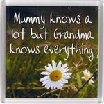 Fridge Magnet 047 Mummy knows a lot but grandma knows everything