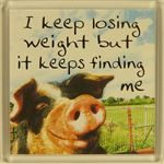 Fridge Magnet 057 I keep loosing weight but it keeps finding me