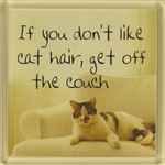 Fridge Magnet 058 If You Dont Like Cat Hair Get Off The Couch