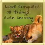 Fridge Magnet 076 Love conquers all things, even snoring