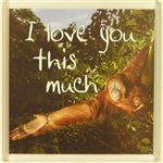 Fridge Magnet 169 I love you this much