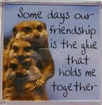 Fridge Magnet 014 Some days our friendship is the glue that holds me together