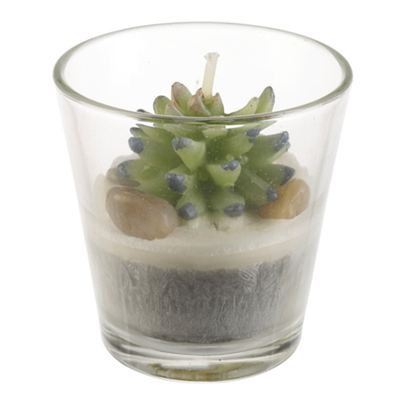 Cactus Candle in Glass Holder