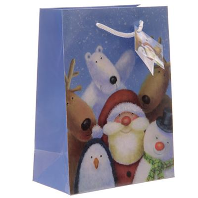 Christmas Gift Bag Jan Pashley 23cm