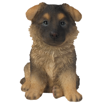Alsatian Puppy Pet in Gift Box
