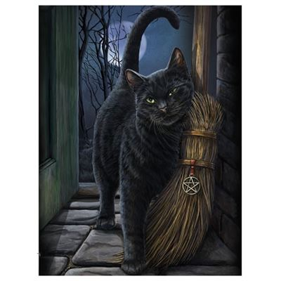 Cat with Broom 3D Picture