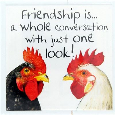 Friendship is a whole conversation Fridge Magnet 100