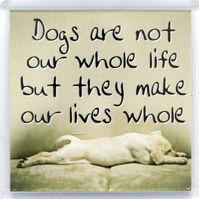 Dogs are not our whole life Fridge Magnet 112