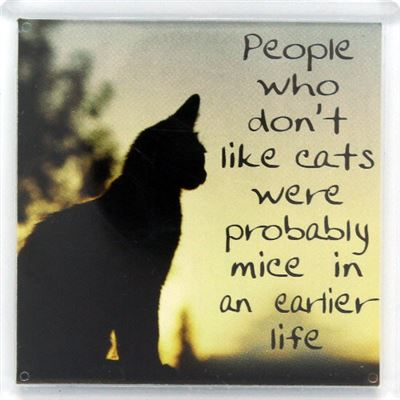 People who don't like cats Fridge Magnet 040