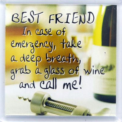 BEST FRIEND In case of emergency Fridge Magnet 119