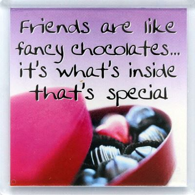 Friends are like fancy chocolates… Fridge Magnet 065