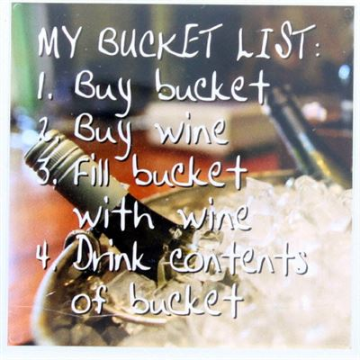 My Bucket List Fridge Magnet 209