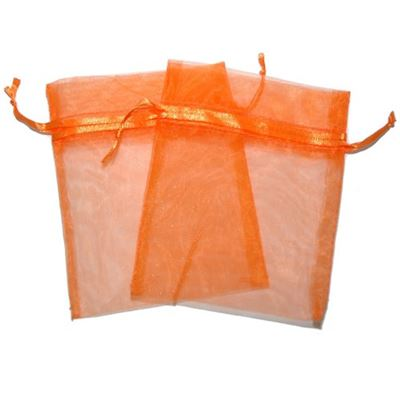 Orange Organza Bag Two Pack