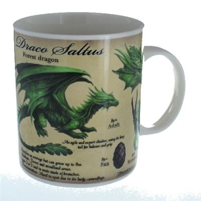 Forest Dragon Mug in a Box