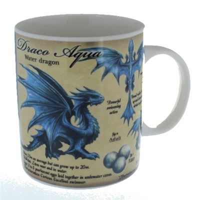 Water Dragon Mug in a Box