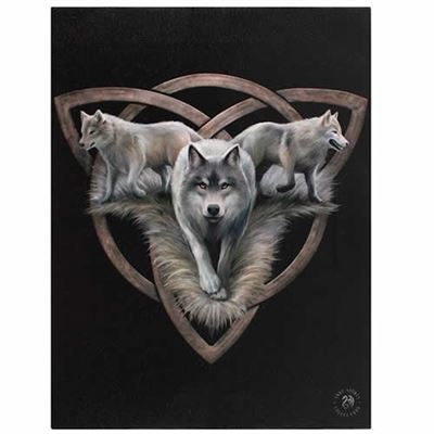 Wolf Trio Canvas Picture by Anne Stokes