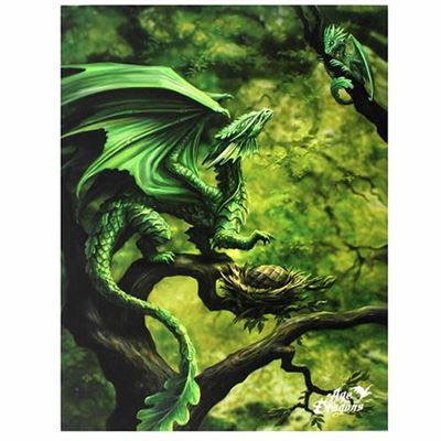 Forest Dragon Canvas Picture by Anne Stokes