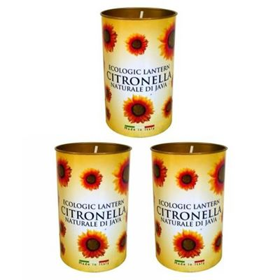 Citronella Lantern Candle Pack of 3