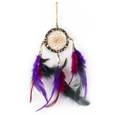 Purple, Pink & Black Dream Catcher 21cm