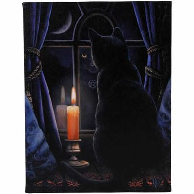 Midnight Vigil Canvas Picture by Lisa Parker