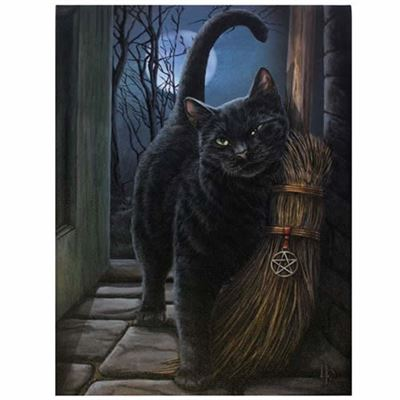 Cat with Broom Canvas Picture by Lisa Parker
