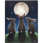 Hare & Moon Canvas Picture by Lisa Parker