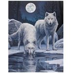 Wolves by Winter Lake Canvas Picture by Lisa Parker