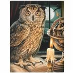 Owl & Candle Canvas Picture by Lisa Parker