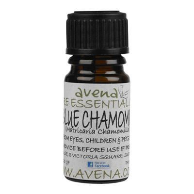 Chamomile German (Blue) Essential Oil (Matricaria chamomilla)