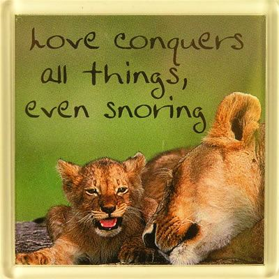 Love conquers all things, even snoring Fridge Magnet 076
