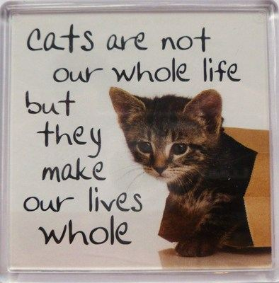 Cats are not our whole life but they make our lives whole Fridge Magnet 099