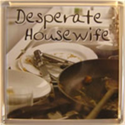 Desperate Housewife Fridge Magnet 155