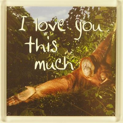 I love you this much Fridge Magnet 169