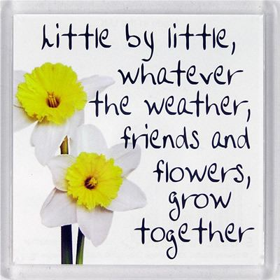 Little by little, whatever the weather... Fridge Magnet 186