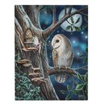 Owl & Fairy Canvas Picture by Lisa Parker