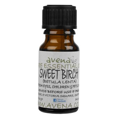 Sweet Birch Essential Oil (Betula lenta)