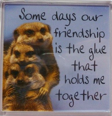 Some days our friendship is the glue that holds me together Fridge Magnet 0...