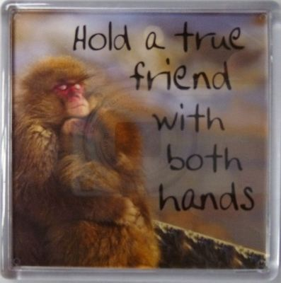 Hold a true friend with both hands Fridge Magnet 089