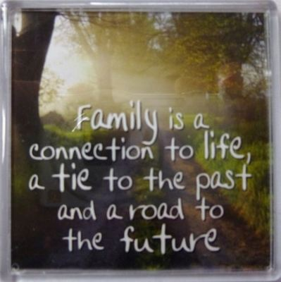 Family is a connection to life, a tie to the past... Fridge Magnet 164