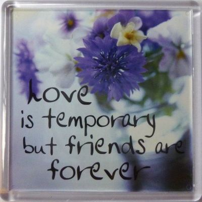 Love is temporary but friends are forever Fridge Magnet 095