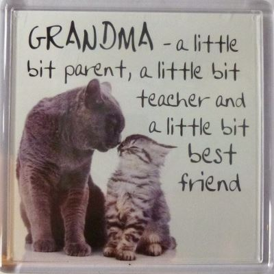 GRANDMA - a little bit parent, a little bit teacher... Fridge Magnet 050