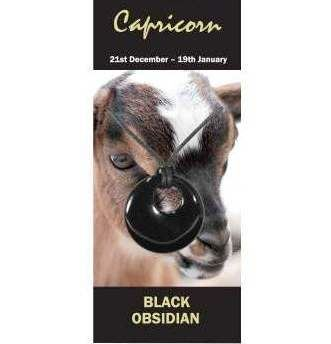Capricorn Natural Jewellery Agogo Necklace