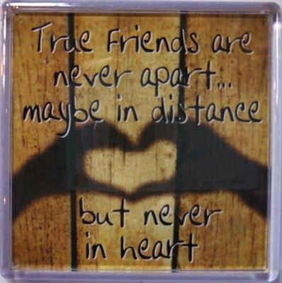 True Friends are never apart... Fridge Magnet 187