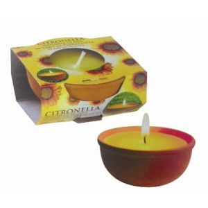 Citronella Candle in Small Terracotta Pot