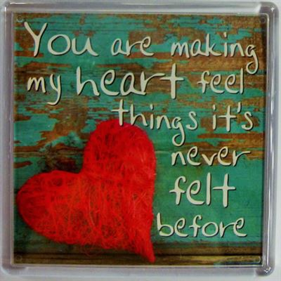 You are making my heart feel things it's never felt before Fridge Magnet 17...