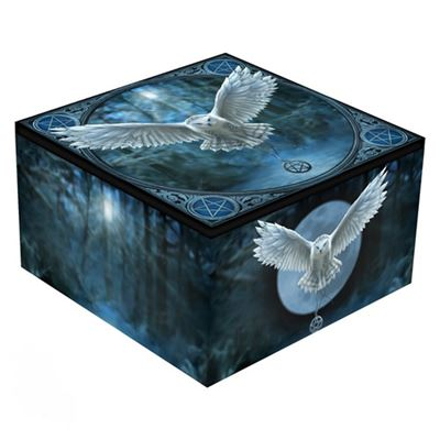 White Owl – Awaken Your Magic Mirror Box