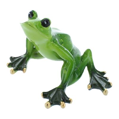 Glass Tree Frog Ready To Jump